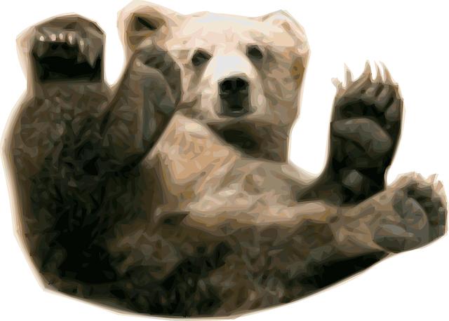 Abnehmen im Schlaf wie der Braunbär im Winter